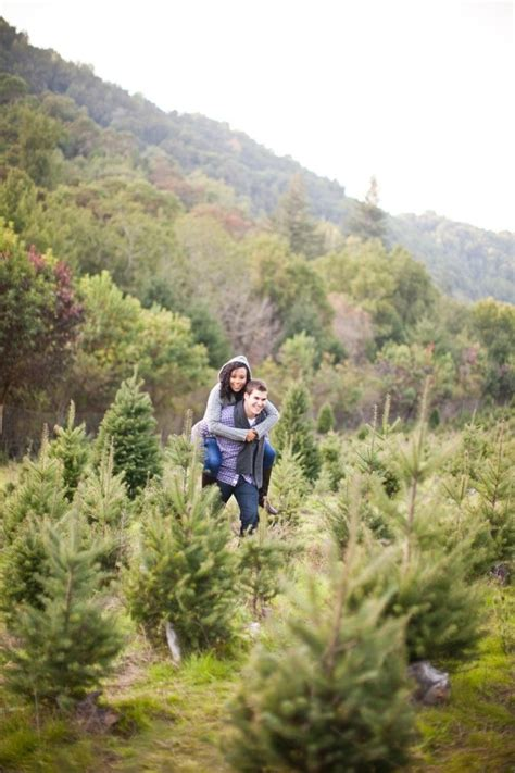 castro valley christmas tree farm engagement from