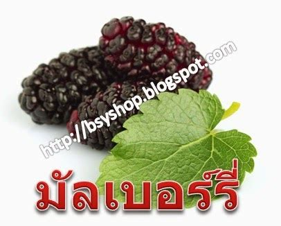 Sho Bsy Noni Black Hair Magic bsy shop noni black hair magic ผล ตภ ณฑ ด านสม นไพรจาก