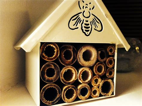 How To Build A Backyard Garden Small Thoughts On Bug Hotels Mrs Apis Mellifera