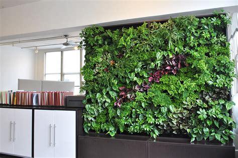 Living Wall Uk Living Walls Aztec Plants