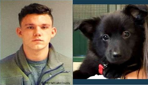 Salt Lake City Justice Court Search Salt Lake City Sentenced For Torturing Killing Puppy Gephardt Daily