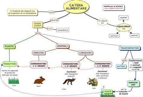 esempio di catena alimentare mappe per la scuola la catena alimentare