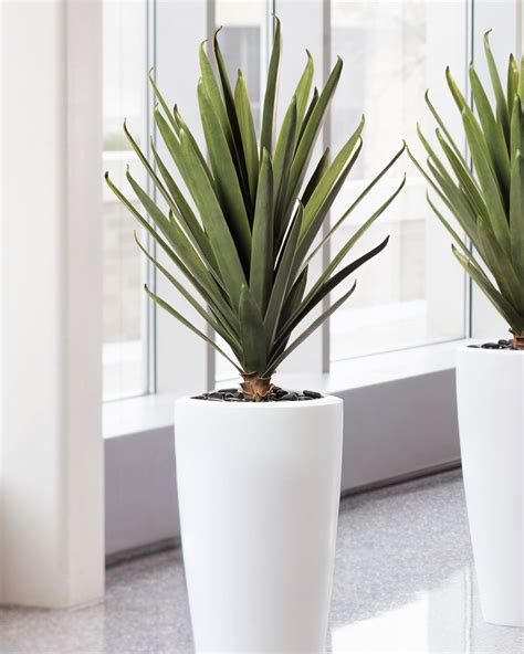 Plants And Planters by Lifelike Carefree Agave Artificial Plant For Home And