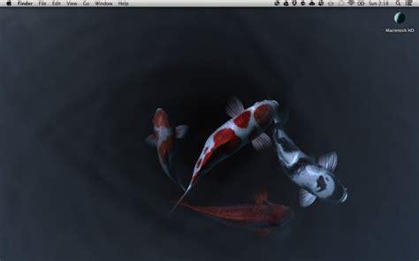 koi fish live wallpaper for mac koi pond 3d a tranquil live desktop for mac mactrast