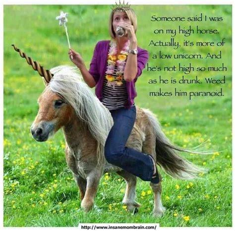 High Horse Meme - high horse drunk unicorn my style pinterest unicorns