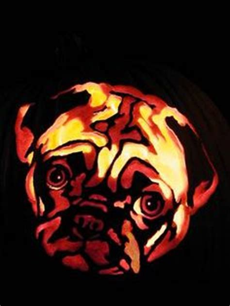 pug pumpkin stencil pumpkin carving templates and pumpkin carvings on