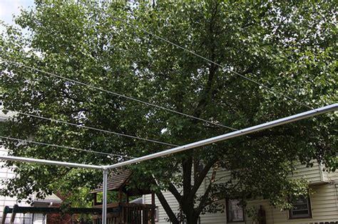 Backyard Grape Trellis by Backyard Grape Vine Trellis Pipe Wire Flickr Photo