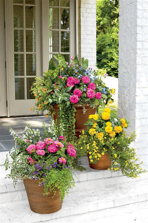 Ideas For Container Gardening Spectacular Container Gardening Ideas Southern Living