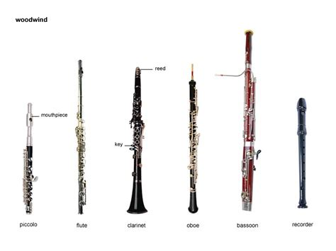 wind section instruments woodwind noun definition pictures pronunciation and