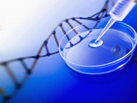 test genetica l importance des tests d adn en 2014