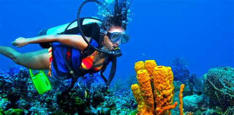 dive vacation mexico scuba cave diving resorts all inclusive vacation