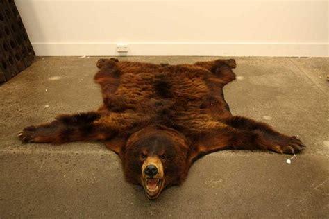 bearskin rugs skin rug the inner sanctum