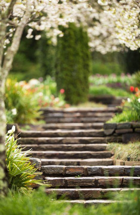 spring jpg studio background images blur photo