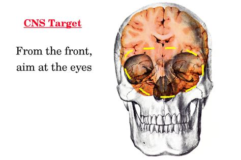 printable sniper head targets printable sniper face targets short hairstyle 2013