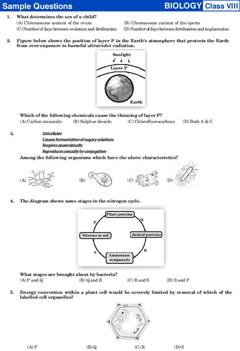 biology tutorial questions cbse maths question paper for class 8 2013 8th imo