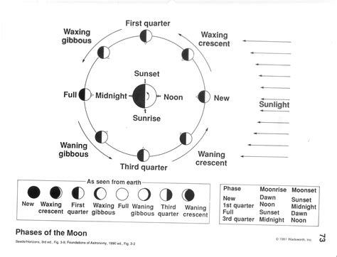 diagram of moon phases labeled moon phases diagram