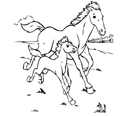 coloring pictures of horses and ponies desenhos de cavalos para colorir desenhos para colorir