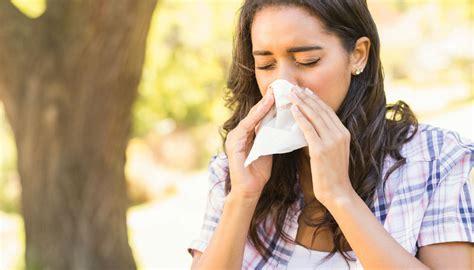allergia graminacee alimenti da evitare allergie a pollini e graminacee quali cibi evitare