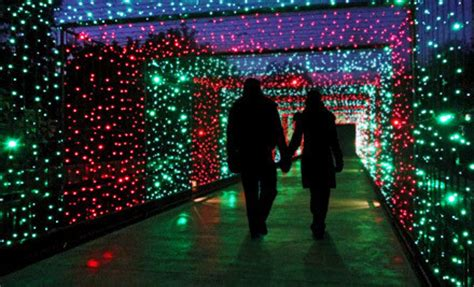 hogle zoo lights thrifty 101