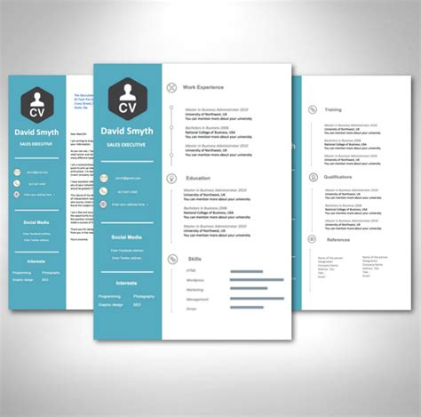 captivating international resume format download in resume format