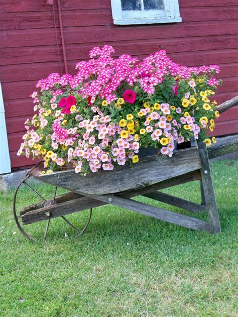 wheelbarrow garden ideas 25 best ideas about wheelbarrow planter on