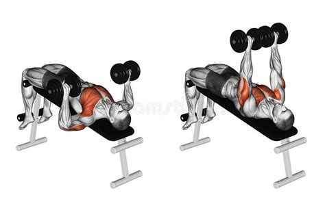 dumbbell decline bench press exercising decline dumbbell bench press stock