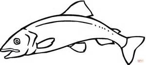 salmon template sketch and salmon coloring pages