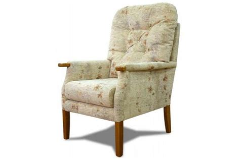 Cintique Armchair by Cintique Average With Side Panels Armchair