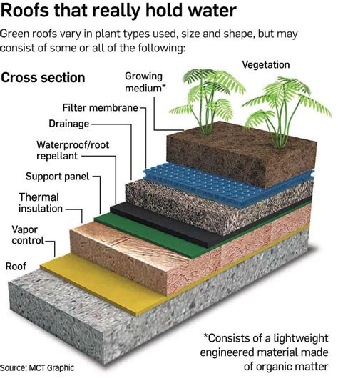 green roof section green roof layers shipping container home pinterest
