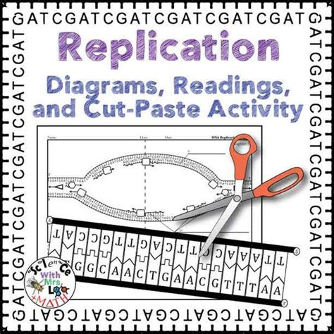Dna And Replication Worksheet by Activities Dna And Science On