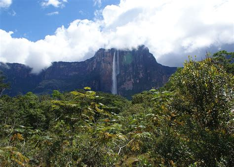 angel boat trip angel falls boat trip venezuela audley travel