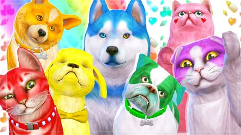 lets  rainbow pets  sims  cats dogs youtube