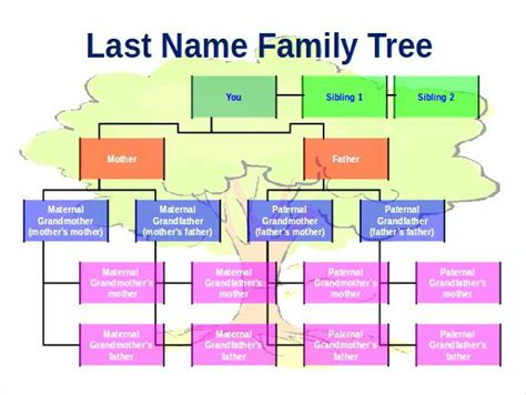 family tree template word 2007 family tree template chart pa country store diagram