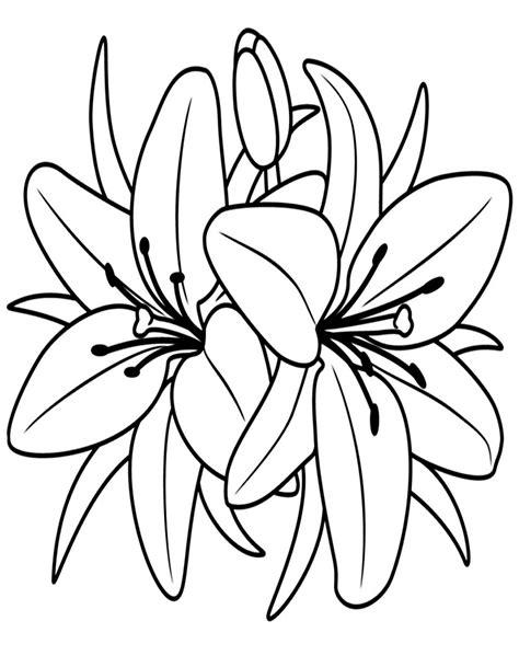 fiori da colorare immagini di fiori da stare