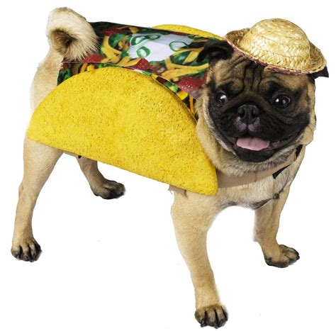 dogs halloween costume top 20 best cute dog costumes for halloween