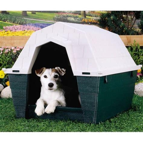 ruff hauz dog house welches image hat ruff hauz bewertungen nachrichten such trends