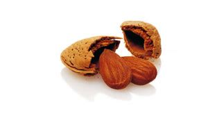 in quali alimenti si trova il magnesio il magnesio dieta nutrizione benessere salute dr