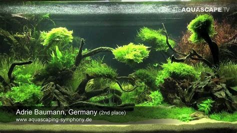 How To Aquascape A Planted Tank by Aquascape The Of The Planted Aquarium 2011 Adrie