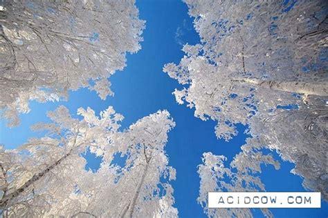 Imagenes Bonitas De Invierno | fotos bonitas del invierno taringa