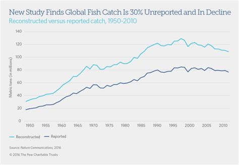 new study finds the global study finds 30 percent of global fish catch is unreported