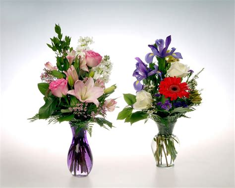 Lasting Flowers For Vases by Modern Vase Joseph Beth Gift Shop At Cleveland Clinic