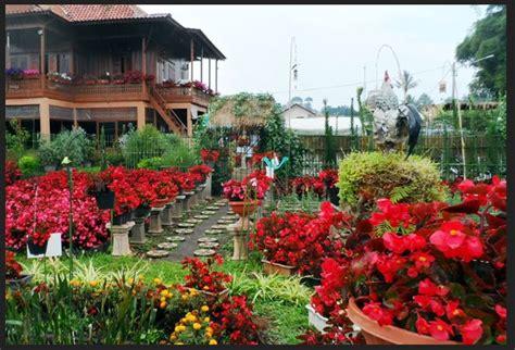 desain kebun bunga 7 taman bunga terindah di indonesia wajib anda kunjungi