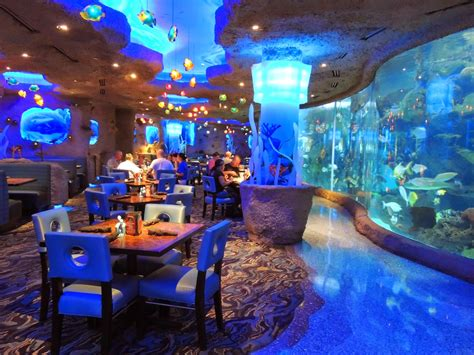 design aquarium restaurant india s first underwater restaurant opens khaleej times