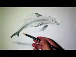 Dessin De Requin Facile