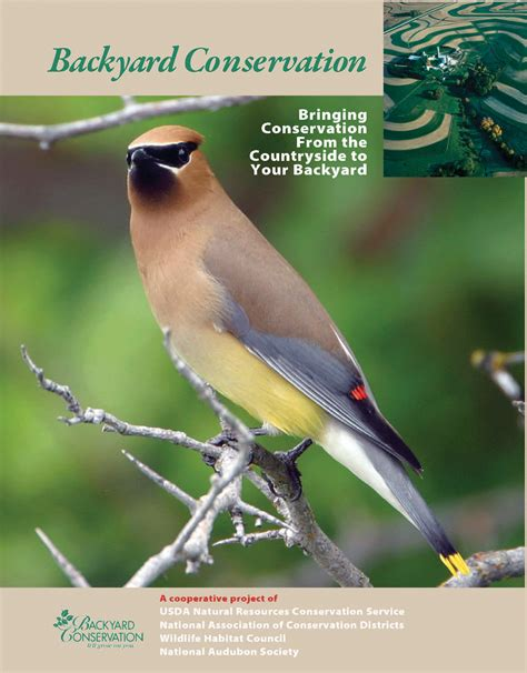 backyard conservation conservation work has a place in your backyard nrcs