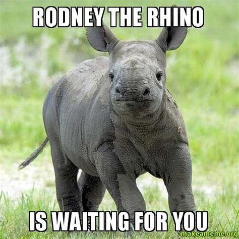 Rhino Memes - rodney the rhino is waiting for you make a meme