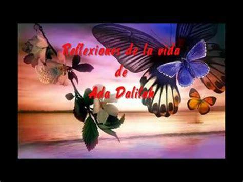 imagenes con mariposas y reflexiones una reflexion la mariposa y la flor youtube