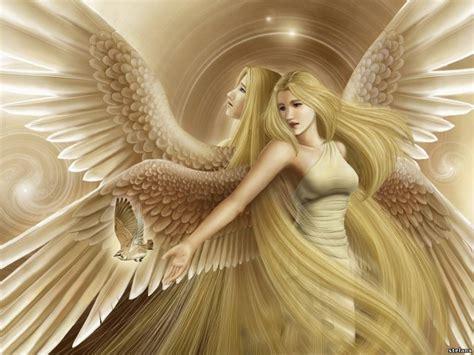 imagenes en 3d angeles imagen de 225 ngeles amor y im 225 genes