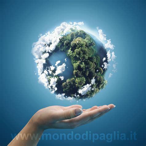 le pi禮 mondo mondo di paglia ecologia abitativa bio intelligente