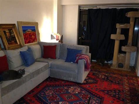 rug ideas     light gray sofa  blue curtains